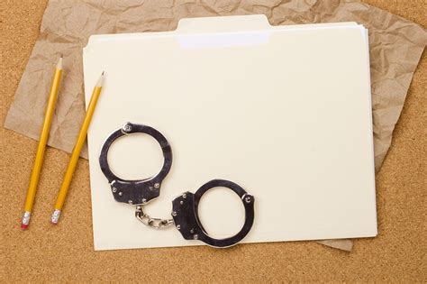 Behaviour Bond Criminal Record Offering Diversified Services Can Lead To Larger Audiences And Profits