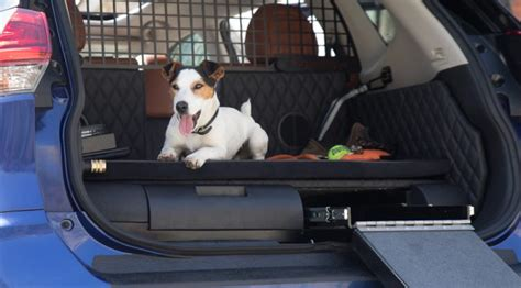 nissan suv for dogs nissan rogue dogue suv puts fido extremetech