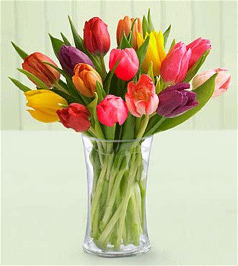 tulips arrangements tulip world of photography