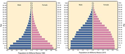 How To Make A Population Pyramid On Paper - geogjis as population assignments