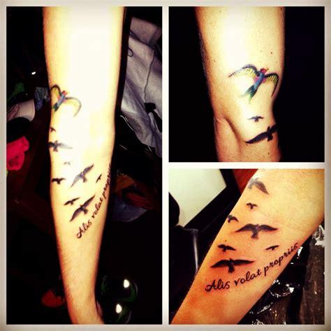 tattoo alis volat propriis bird tattoo alis volat propriis tattoo pinterest