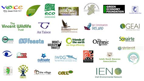 design environment group ien the irish environmental network