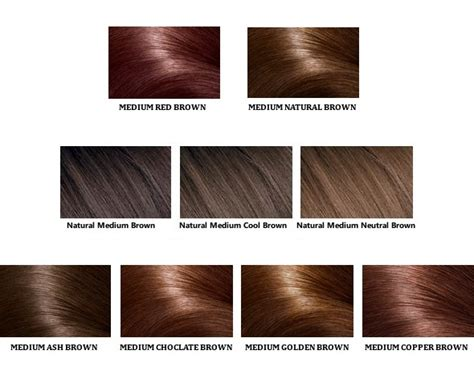 types of browns for hair color loreal color chartdifferent blondebrownreddark hair color