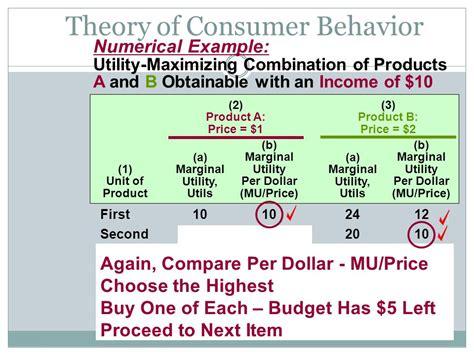 consumer behavior utility maximization consumer behavior and utility maximization ppt video