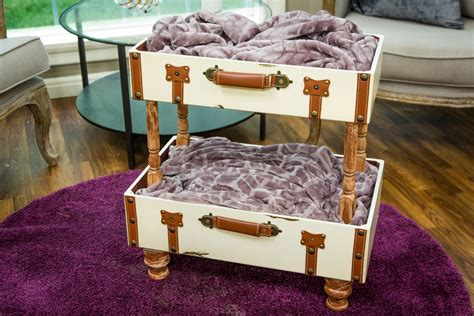 Bunk Beds For Cats How To Diy Cat Suitcase Bunk Bed Home Family Hallmark Channel