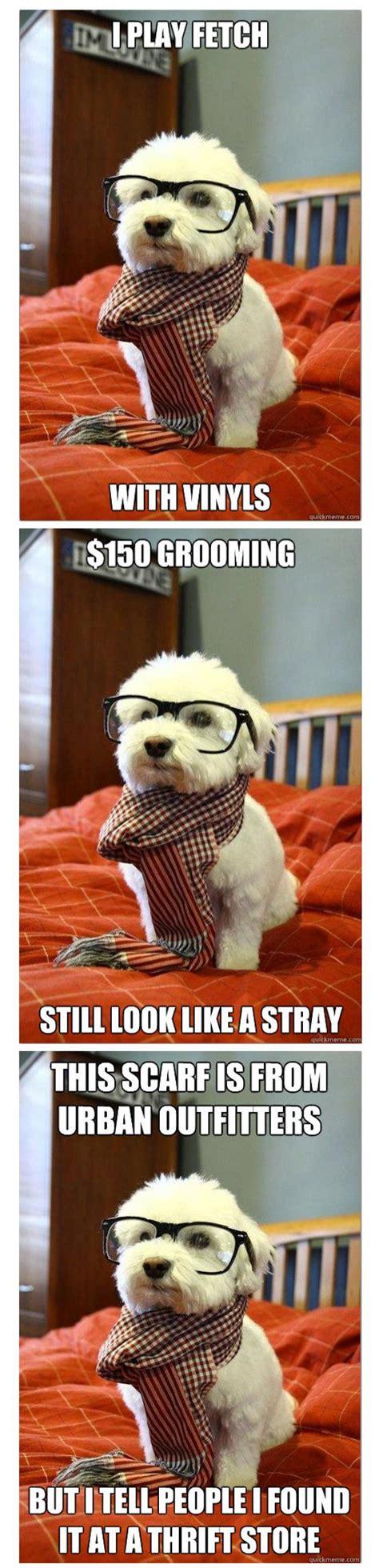Hipster Dog Meme - hipster dog memes