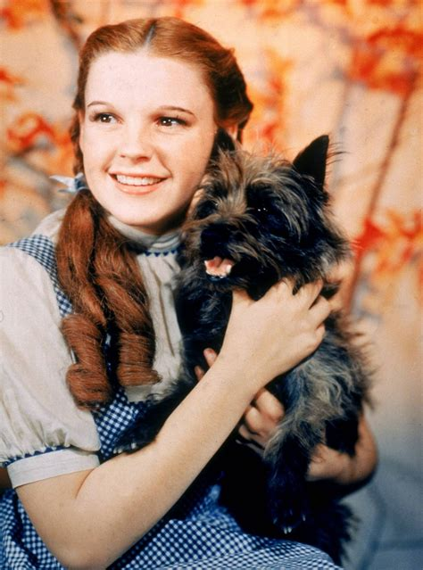 judy garland as dorothy wizard of oz a mythical monkey writes about the movies the katie bar