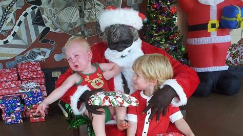 a white christmas christmas in australia is black meet