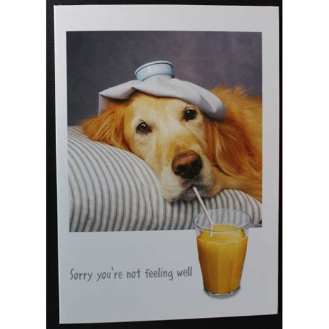 where to get puppies papyrus get well card sick