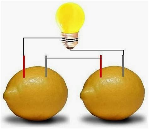 how to a lemon battery light a light bulb sandydk lemon battery how to a lemon powered light