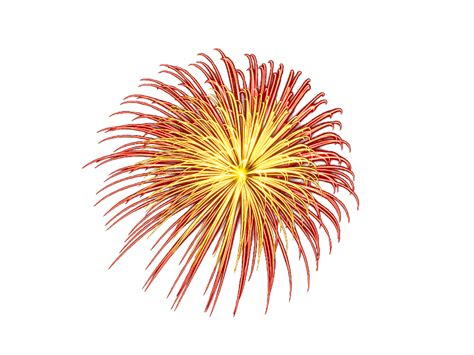 download fireworks png image hq png image freepngimg fireworks png with transparent background isolated