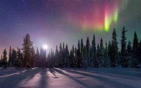 the northern lights & beautiful landscapes in sweden