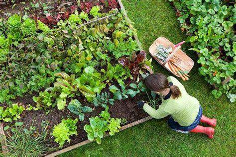 Garden Work by Grow Organic Garden On Your Own Feminiyafeminiya