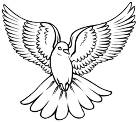 dove outline tattoo 20 dove designs and ideas for