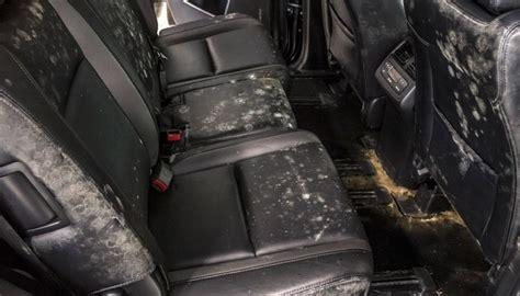 interior detail auto detailing seattle bellevue lynnwood