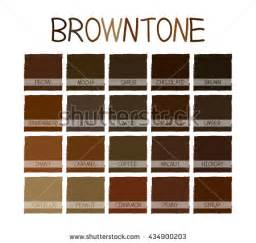 names of brown colors brown colors stock images royalty free images vectors
