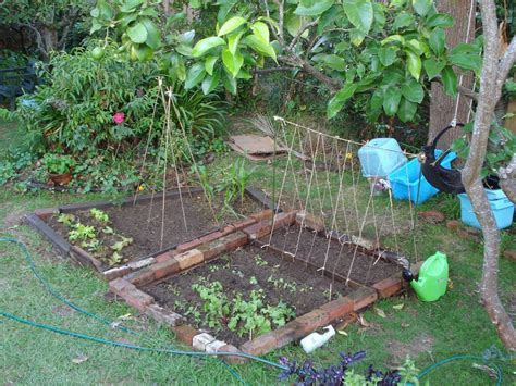 Diy Garden Trellis Ideas Ewa In The Garden 15 Ideas Of Diy Pea Trellis