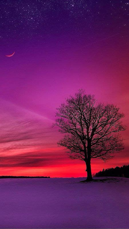 05 Set Sunset Pink Muda 355 best images about painting oceans sunsets on watercolors paintings and