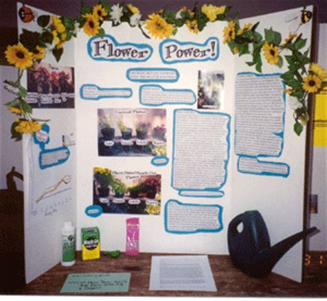 horticulture contests, science fairs, & beautification