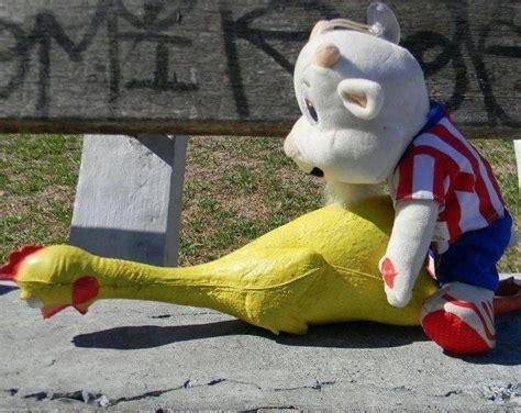 imagenes perronas del america resultados del clasico chivas y america fotos chistosas