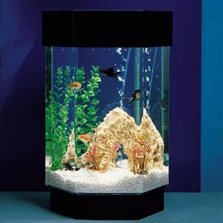 Aquascape Designs Products by Hexagon Aquascape Aquarium Flaghouse