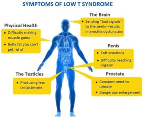 crossdresser signs symptoms in men herbal health 13 warning signs of low testosterone photo