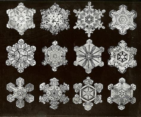 bentley snow 17 best images about crystals on pinterest snowflakes