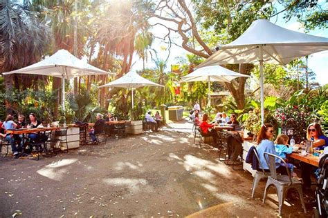 Botanical Gardens Melbourne Cafe Botanic Gardens Restaurant Best Cafes City Secrets