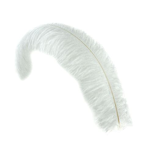 www feather ostrich feathers floss white floss ostrich feather
