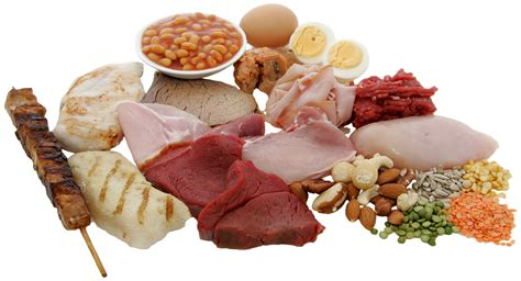 what are proteins sources and functions of protein in