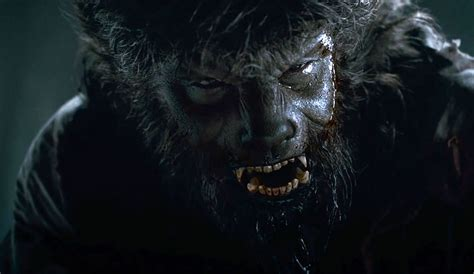 13 must see werewolf movies five must see werewolf movies for halloween or the next