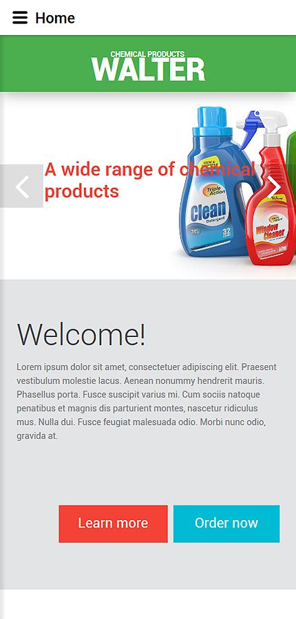 Cleaning Supplies Website Template Chemical Website Templates