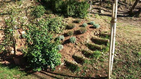realizzazione giardini privati spazioverde progettazione tuo giardino spazioverde