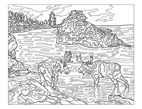 coloring books for adults national bookstore the club national parks coloring book club