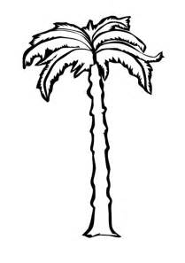 Coloring Pictures Palm Trees  Free Pages On Art sketch template