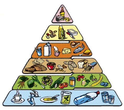 energia alimentare catene reti e piramidi alimentari pagina 3
