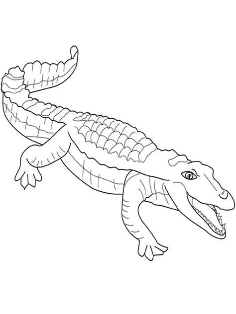 printable crocodile coloring pages coloring me