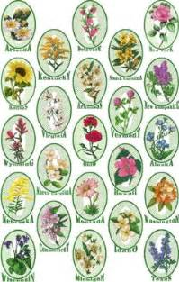 list of state flowers advanced embroidery designs complete state flowers set