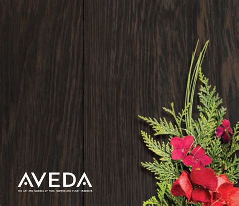 Aveda Gift Card - holiday specials quattra via aveda salon spa