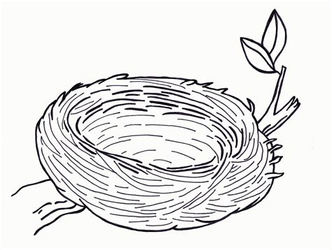 coloring pages of birds in a nest top 85 nest coloring pages free coloring page