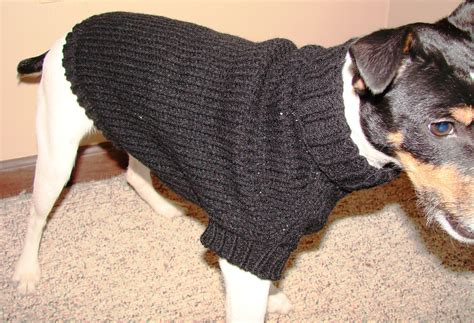 knitting pattern dog coat jack russell knitting pattern dog coat jack russell comsar for