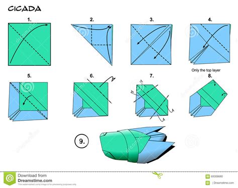 Origami Cicada - origami cicada steps stock illustration image 69306680