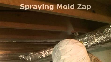 how to remove basment ceiling mold wmv