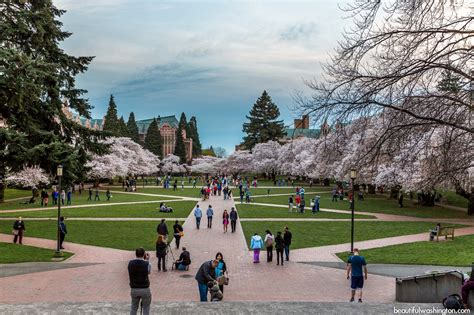Of Washington Evening Mba Tuition by Top Mba Rankings No Gmat Aacsb Degree Programs