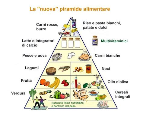 piramide alimentare nuova piramide alimentare nuova e vecchia
