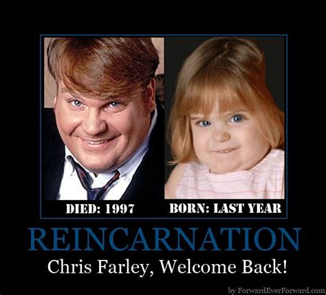 Chris Farley Reincarnation Meme - 1000 images about reincarnation and the after life do we