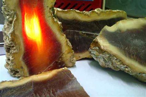 Batu Akik Api Bengkulu batu akik raflesia bengkulu secret