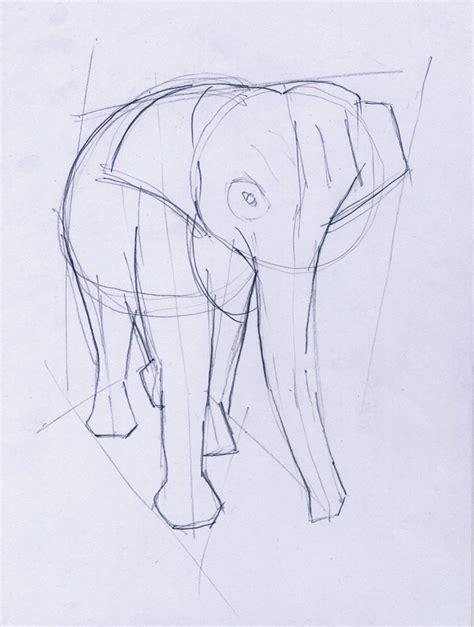 desain gambar gajah menggambar gajah belajar menggambar
