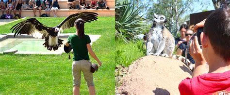 zoom cumiana prezzi ingresso zoo torino prezzi biglietti scontati 20 zoom torino