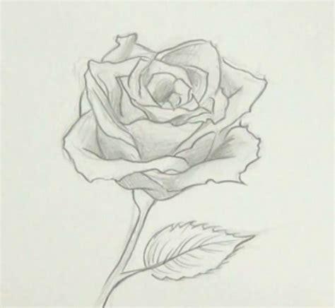 imagenes para dibujar una rosa como dibujar una flor informaci 243 n im 225 genes